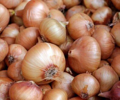onions-1397037_1280